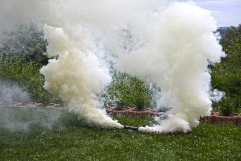 blackboxx jumbo rauchfackel weiß e feuerwerkland shop - Feuerwerkland