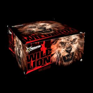 lesli wild lion verbundfeuerwerk feuerwerkland shop - Feuerwerkland
